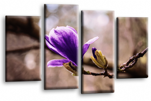 Spring Floral Flower Wall Art Picture Grey Purple Print